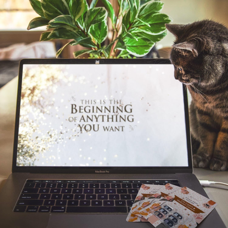Cat webcam cover